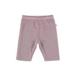 Chinosy chłopięce: Staccato Girls Baby Spodnie dwustronne rosy Streifen