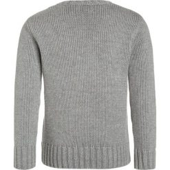 Swetry chłopięce: Polo Ralph Lauren FLAG Sweter grey heather