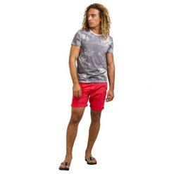 Protest T-Shirt Męski Tail S Szary. Niebieskie t-shirty męskie marki Oakley, na lato, z bawełny, eleganckie. W wyprzedaży za 109,00 zł.