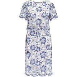 Sukienki: Dorothy Perkins EXCLUSIVE LACE PENCIL Sukienka etui blue