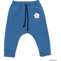 Spodnie dresowe Blue Basic. Niebieskie spodnie dresowe dziewczęce Pakamera, z bawełny. Za 79,00 zł.