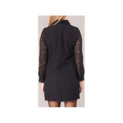 Sukienki krótkie Molly Bracken  DADIC. Czarne sukienki hiszpanki Molly Bracken, s, z krótkim rękawem, mini. Za 247,20 zł.