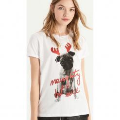 T-shirt z mopsiakiem - Biały. Białe t-shirty damskie Sinsay, l. Za 24,99 zł.