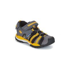 Sandały sportowe Dziecko  Geox  J BOREALIS B. C. Szare buty sportowe chłopięce Geox. Za 231,20 zł.