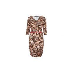 Sukienki: Sukienki krótkie Morgan  RELEMI