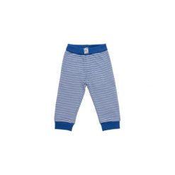 Spodnie niemowlęce: SALT AND PEPPER Baby Glück Boys Spodnie Funky Tiger bright blue