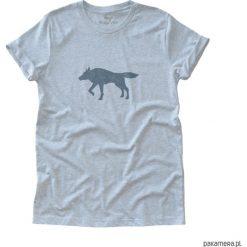 Tshirt unisex WOLF jasny szary. Szare t-shirty męskie z nadrukiem Pakamera, z bawełny. Za 75,00 zł.