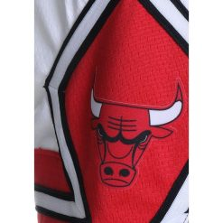 Spodenki chłopięce: Nike Performance SWINGMAN ASSOCIATION SHORT Krótkie spodenki sportowe white/red