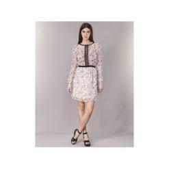 Sukienki krótkie Morgan  RAINA. Czerwone sukienki mini marki Morgan, z krótkim rękawem. Za 255,50 zł.