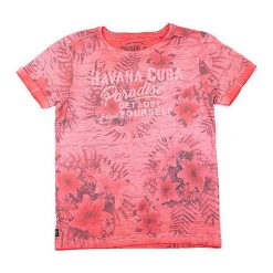 T-shirty chłopięce z nadrukiem: Koszulka w kolorze koralowym