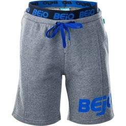 Spodenki chłopięce: BEJO Szorty juniorskie Grilo Kids Light Grey Melange/Princess Blue r. 110