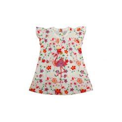 Ebi & Ebi  Fairtrade Sukienka allover/biały - Gr.Moda (6 - 24 miesięcy ). Niebieskie sukienki niemowlęce marki Ebi & Ebi, z bawełny, z długim rękawem. Za 49,00 zł.