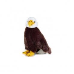 Maskotka DANTE National Geographic Orzeł. Brązowe przytulanki i maskotki DANTE, z materiału. Za 69,90 zł.