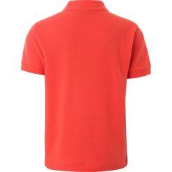 Lacoste PJ290900 Koszulka polo watermelon. Szare bluzki dziewczęce bawełniane marki Lacoste. Za 219,00 zł.