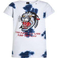 T-shirty chłopięce z nadrukiem: Replay Tshirt z nadrukiem ice