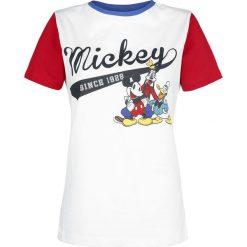 Myszka Miki i Minnie Since 1928 Koszulka damska wielokolorowy. Szare bluzki asymetryczne Myszka Miki i Minnie, xxl, z motywem z bajki, z okrągłym kołnierzem. Za 74,90 zł.