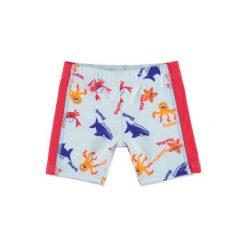 Odzież dziecięca: anna & tom Boys Szorty kąpielowe Zwierzątka kolor czerwono-niebieski