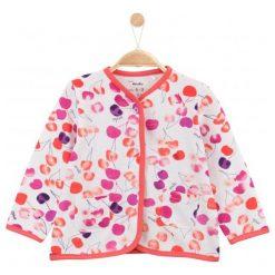 Bluzy dziewczęce: Bluza w owocowy deseń dla niemowlaka
