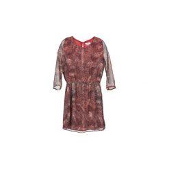 Sukienki hiszpanki: Sukienki krótkie Suncoo  CECYLE