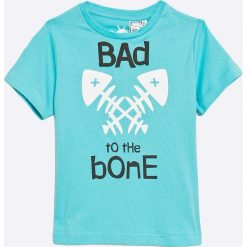 Odzież chłopięca: zippy - T-shirt dziecięcy 95-118 cm