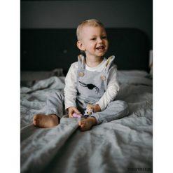 Spodnie niemowlęce: Ogrodniczki Królik Roger