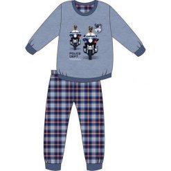 Odzież chłopięca: Piżama Young Boy 966/85 Dog patrol niebieska r. 164