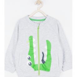 Bluza. Szare bluzy chłopięce rozpinane marki BABY DINO, z nadrukiem, z bawełny. Za 69,90 zł.