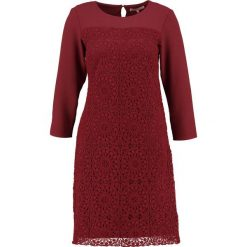 Sukienki: Anna Field Sukienka letnia port royal