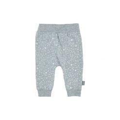 Feetje Spodnie little star grey. Niebieskie spodnie dresowe chłopięce marki Feetje. Za 49,00 zł.