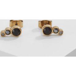 Kolczyki damskie: Dyrberg/Kern LINI Kolczyki goldcoloured