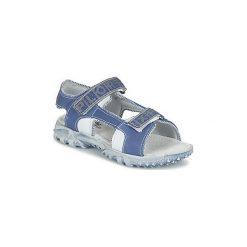 Sandały Dziecko  Citrouille et Compagnie  PANGLU. Niebieskie sandały chłopięce Citrouille et Compagnie. Za 125,30 zł.