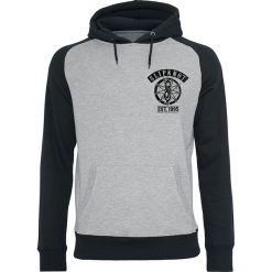 Slipknot Goat Flames Bluza z kapturem szary/czarny. Czarne bluzy męskie rozpinane marki Slipknot, m, z nadrukiem, z kapturem. Za 184,90 zł.