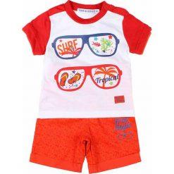 T-shirty chłopięce z nadrukiem: 2-częściowy zestaw w kolorze pomarańczowo-białym