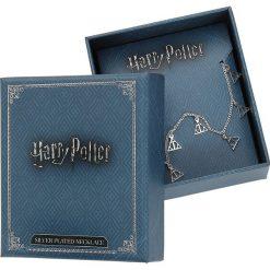 Naszyjniki damskie: Harry Potter Deathly Hallows Naszyjnik srebrny