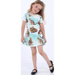 Sukienka dziewczęca w koty miętowa NDZ8164. Szare sukienki dziewczęce marki Fasardi. Za 49,00 zł.