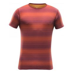 Odzież termoaktywna męska: Devold Koszulka Termoaktywna Z Krótkim Rękawem Breeze T-Shirt Syrah Stripe Xxl