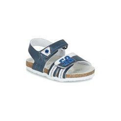 Sandały Dziecko  Chicco  HEDO. Niebieskie sandały chłopięce Chicco. Za 139,30 zł.