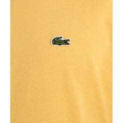T-shirty chłopięce: Lacoste Tshirt basic bee