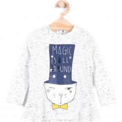 Koszulka. Szare bluzki dziewczęce bawełniane marki MAGIC IS ALL AROUND, z aplikacjami, z falbankami, z długim rękawem. Za 29,90 zł.