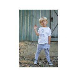 Spodnie niemowlęce: SPODNIE LEO GRAY