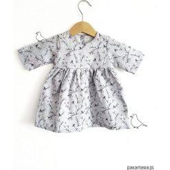 Sukienka birdy. Szare sukienki dziewczęce Pakamera, z bawełny. Za 125,00 zł.