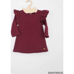 Sukienka z kolnierzykiem i aksamitka. Czerwone sukienki dziewczęce marki Pakamera, z długim rękawem, długie. Za 99,00 zł.