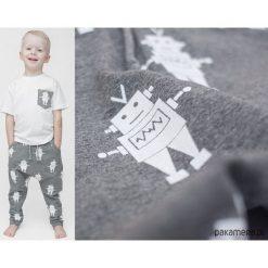 Chinosy chłopięce: Wiosenne spodnie baggy szare ROBOTY