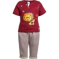 Chinosy chłopięce: Gelati Kidswear JOGGINGPANTS BABY SET  Spodnie materiałowe multicolor