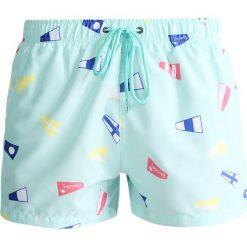 Kąpielówki męskie: Boardies FLAG Szorty kąpielowe mint