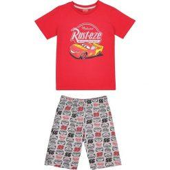 Bielizna chłopięca: Piżama ze spodenkami Cars 2-8 lat