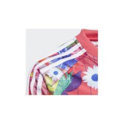 Bluzy dresowe Dziecko adidas  Bluza GRPHC SST. Różowe bluzy chłopięce Adidas, z dresówki. Za 139,30 zł.