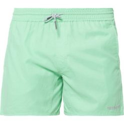 Kąpielówki męskie: Brunotti CRUNOT Szorty kąpielowe spring green