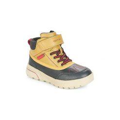 Śniegowce Dziecko Geox  J SVEGGEN BOY B ABX. Żółte buty zimowe chłopięce Geox. Za 329,00 zł.
