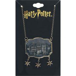 Naszyjniki damskie: Harry Potter Potions Naszyjnik złoty